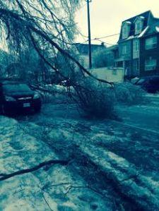 ice storm street view