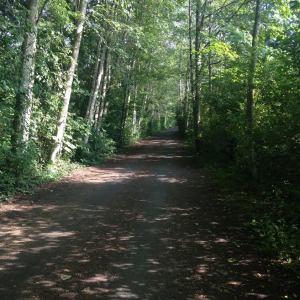 Victoria BC path 2