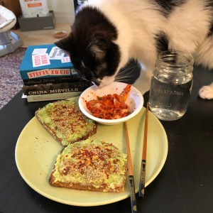 Photo of a cat smelling some stinky-good kimchi on a plate with some avocado toast with books in the background. The author wishes to advise that said cat (Fat Jeoffy) stepped in the avocado toast but she still ate it.